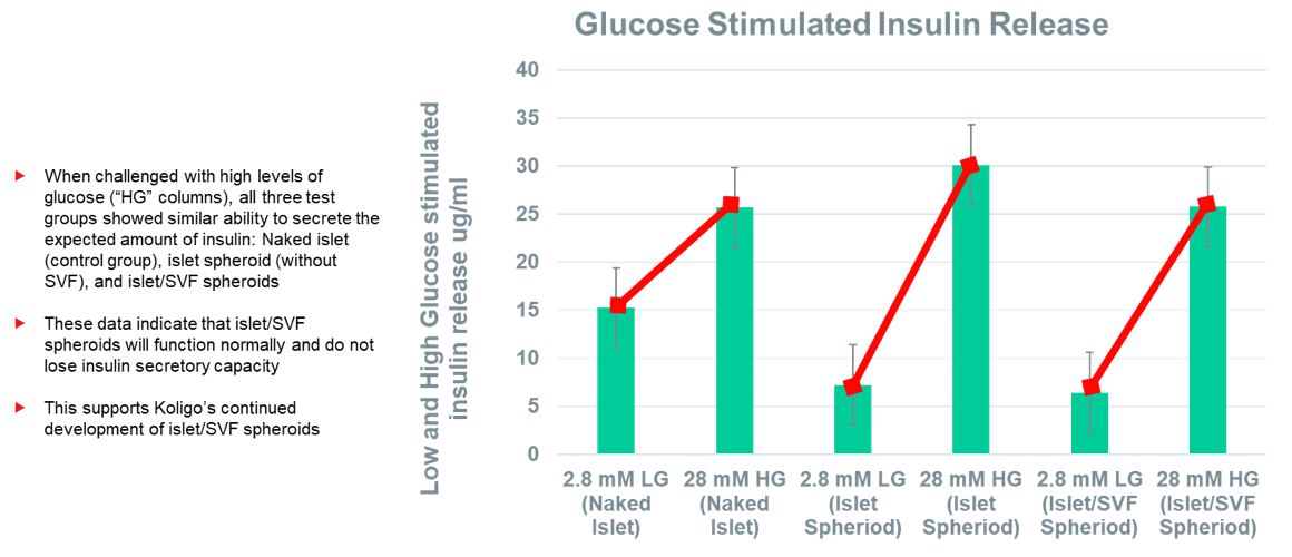 Glucose Stimulated Insulin Release